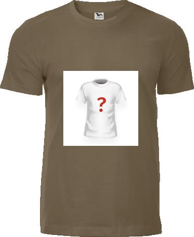 1ea8efa83979 Pánske tričko Adler Replay